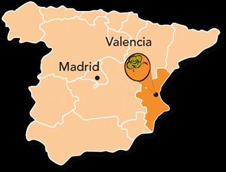 Persimon® Kaki aus der Region Valencia