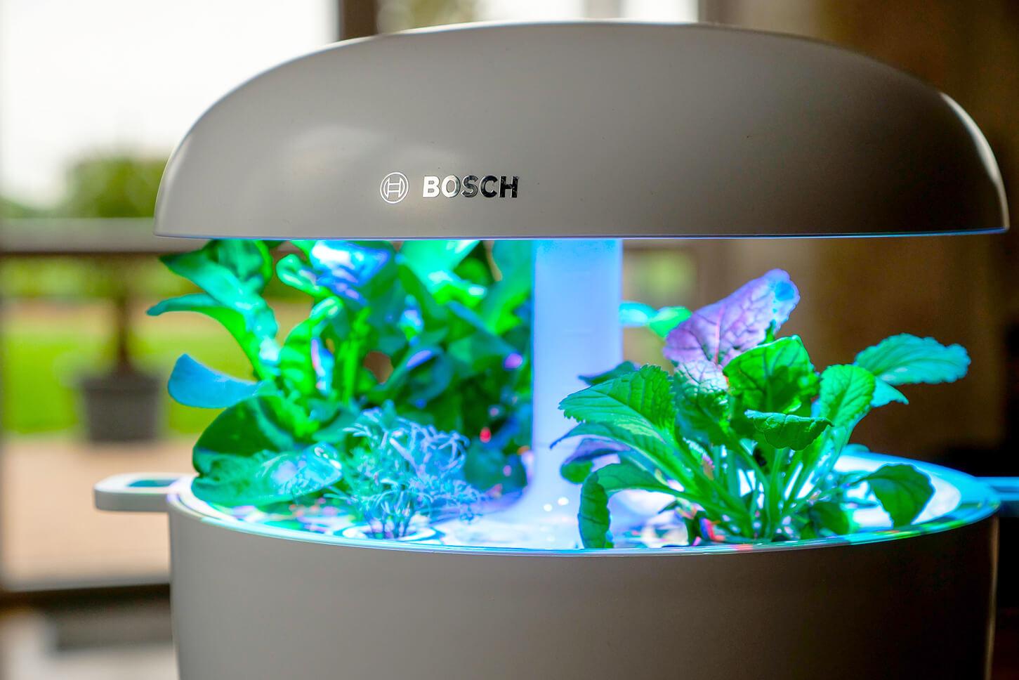 Werbung. Produktneuheit: Bosch SmatGrow - der moderne Kräutergarten für die Küche
