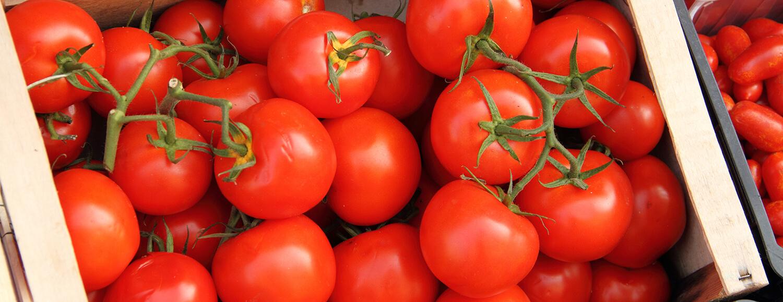 Kiste mit Tomaten Rispen