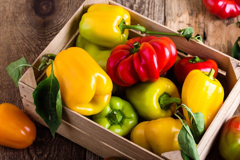 Verschiedene Paprikasorten in einer Gemüsekiste